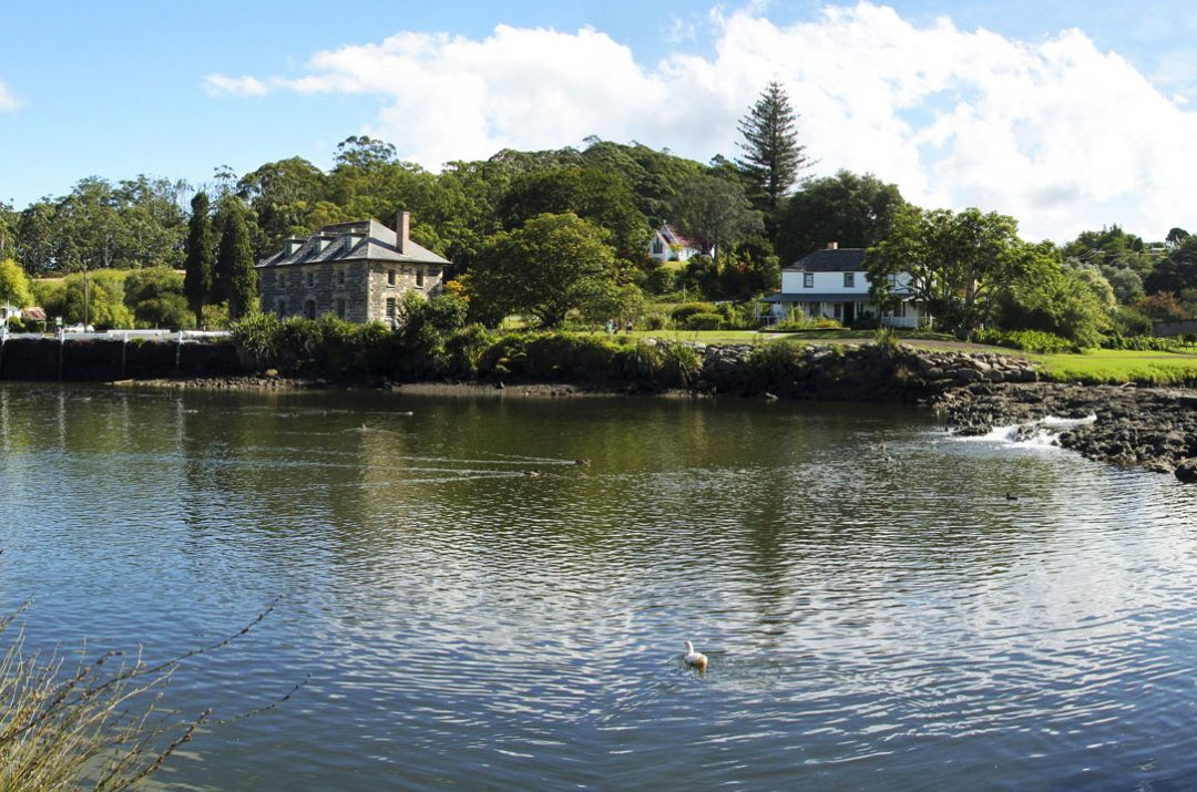 Tours for Kerikeri Basin
